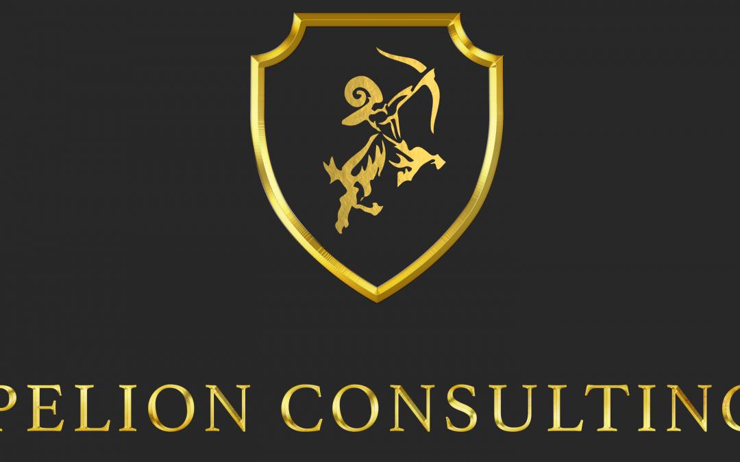 Pelion Consulting International